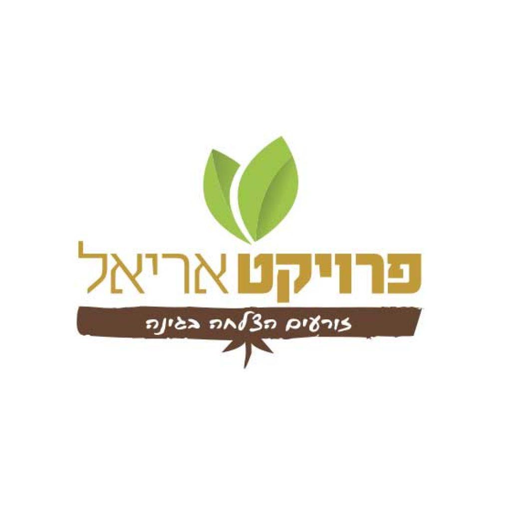 עיצוב--לוגו-למיזם-נוער