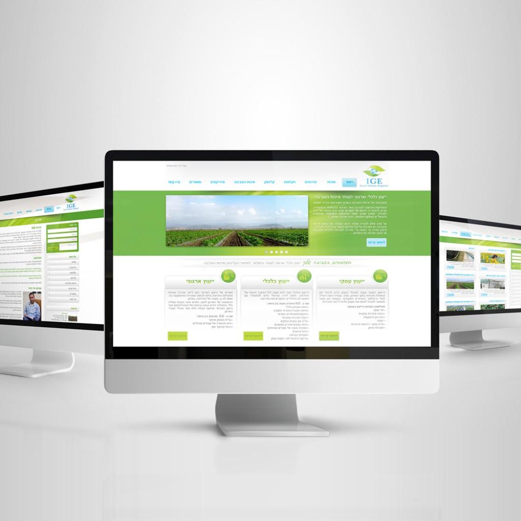 עיצוב אתר ליועץ